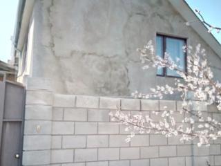 Дом г. Тирасполь, район Балка(Суклея), пер. Фрунзе