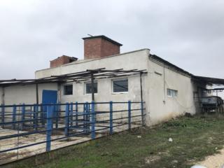 Se vinde (abator), amplasat în satul Mihăileni, r-nul. Rîşcani!