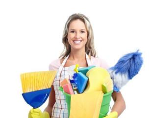 Домохозяйка, платный день.
