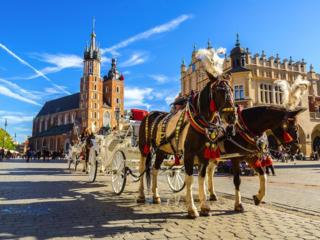 Автобусный тур: Краков-Освенцим–Вроцлав–Варшава 4-10 май 2020 (6 дней)