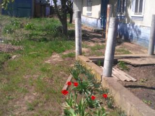 Продаётся недорого дом и участок в Черницах по ул. Мичурина(торгом)