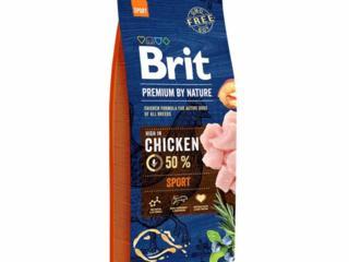 Brit premium в наличии