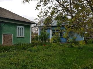 Casa in satul Pelinia R-ul Drochia