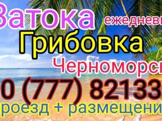 Затока, Грибовка, Ильичевск - ежедневно