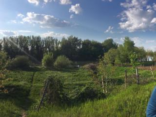 Продается Дом в с. Глиное на берегу реки Турунчук