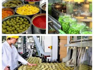 Консервный завод и производство салатов. Fabrica de conserve Polonia.