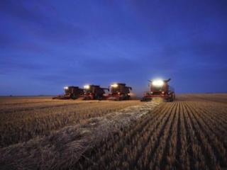 Инвестируем в сельскохозяйственные предприятия Украины