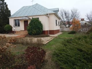 аренда дома в Червоном хуторе
