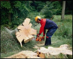 Бензопила: Деревья, дрова.