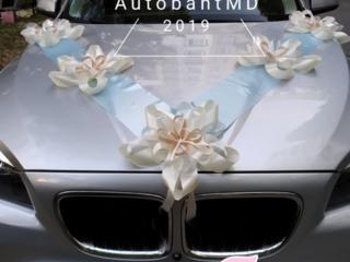 Decor pentru maşina de nunta. Свадебные аксессуары для машины