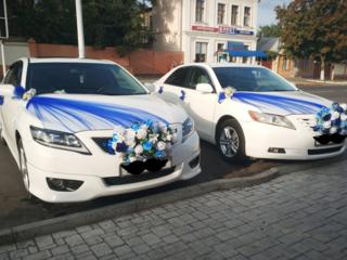 Авто Кортеж белых Камри для Вашего торжества (свадьба и тд. )