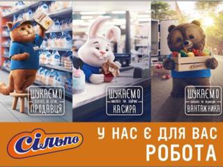 Робота для студентів, Київський р-н