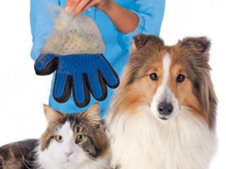 Перчатка для расчесывания шерсти животных