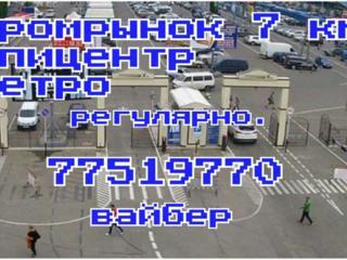 Информация о перевозках Одесса 7 км