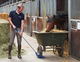 Требуется конюх в конную школу.