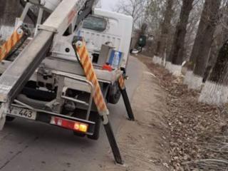 Спилить удалить накренившиеся или треснувшие деревья