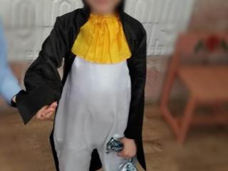 Прокат (продажа) костюмов: гусар, волк, кошечка, пингвин
