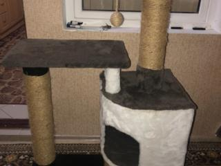 Продам комплекс для кошки