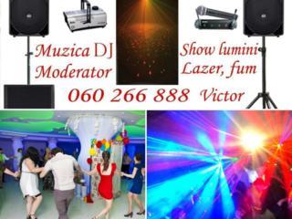 Muzica-DJ. Tamada. Solistă, fum, laser, super show lumini profesionale