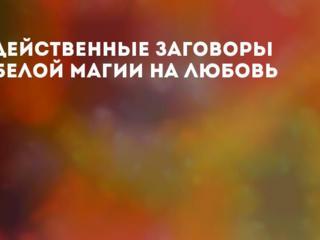 Предсказательница София.