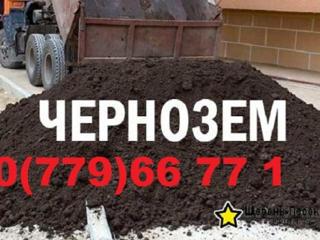 Чернозём хорошего качества!!!