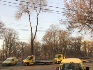 Эвакуатор Бельцы 24/24 evacuator Balti 24/24 tractari auto Balti 24/24