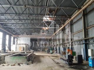 Se vinde Spatiu de Producere de 990 m2 situat pe teritoriu unui ...