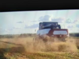 Предлагаем Услуги по уборке зерновых культур