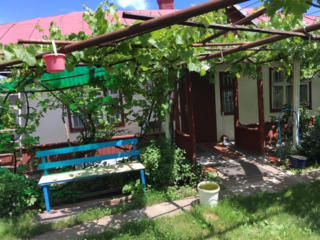 Casa satul Cornesti, Ungheni, 19 ari gradina, garaj, beci, fintina.