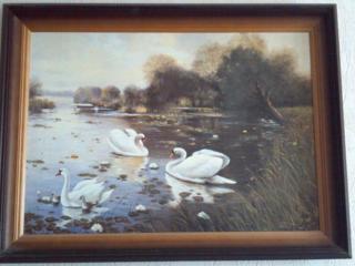 Продаю 2 картины с видом на лесное озеро и горы Карпат.