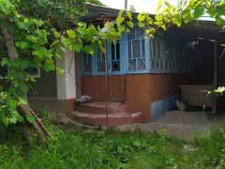 Продается дом в с. Катериновка