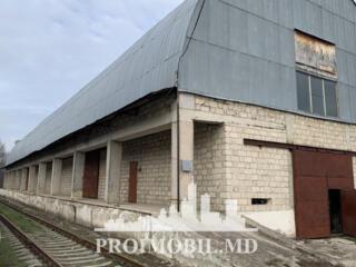 Închiriere - depozit/producere! Amplasare: mun. Chișinău, com. Vatra .