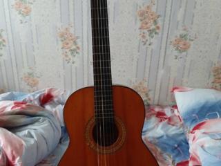 Продам гитары и комплектующие.