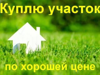 Куплю участок в г. Каушаны для строительства дома