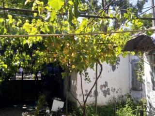 Продается домовладение в центре Григориополя