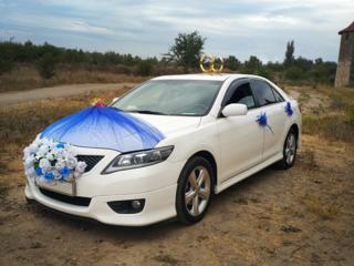 Белоснежные Тойота Камри на торжество(Свадьба, венчание, выписка т. п)