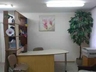 Сдам удобное помещение под офис, в центре Бендер
