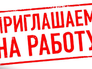 Срочно! ОФИС-МЕНЕДЖЕР
