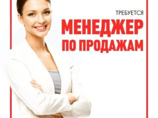 Компания набирает сотрудников с опытом и без опыта работы