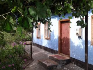 Дом в центре г. Дубоссары р-н Автостанции