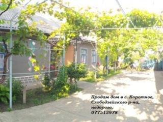 Срочно продам дом в селе Коротное!