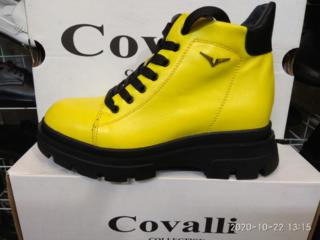 Женская обувь COVALLI в Бельцах.