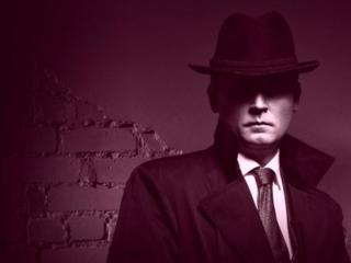 Услуги частного детектива физическим лицам