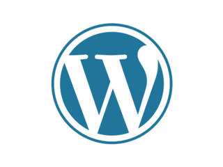 Разработчик WordPress