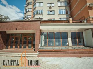 Cvartal Imobil oferă spații comerciale spre chirie. * Sectorul ...