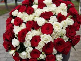 Цветы Шары Духи Тирасполь Доставка