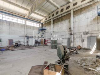 Se dă în chirie spațiu industrial pe str. Nicolae Milescu Spătarul, ..