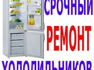 Качественный ремонт Холодильников и Стиральных машин. Недорого
