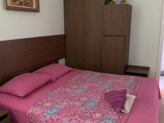 Apartament CHIRIE termen 3--5 ZILE... BOTANICA