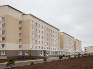 Квартира в новострое (Балка) 62 кв. м, серый вариант + тех. этаж